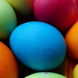 egg-100170_1280