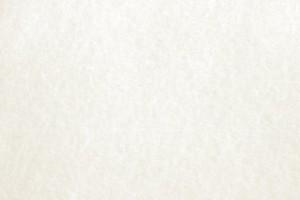 white-parchment-paper-texture-600x4001